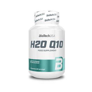 H2O Q10